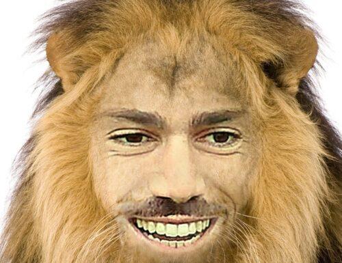 GRAZIANO LION